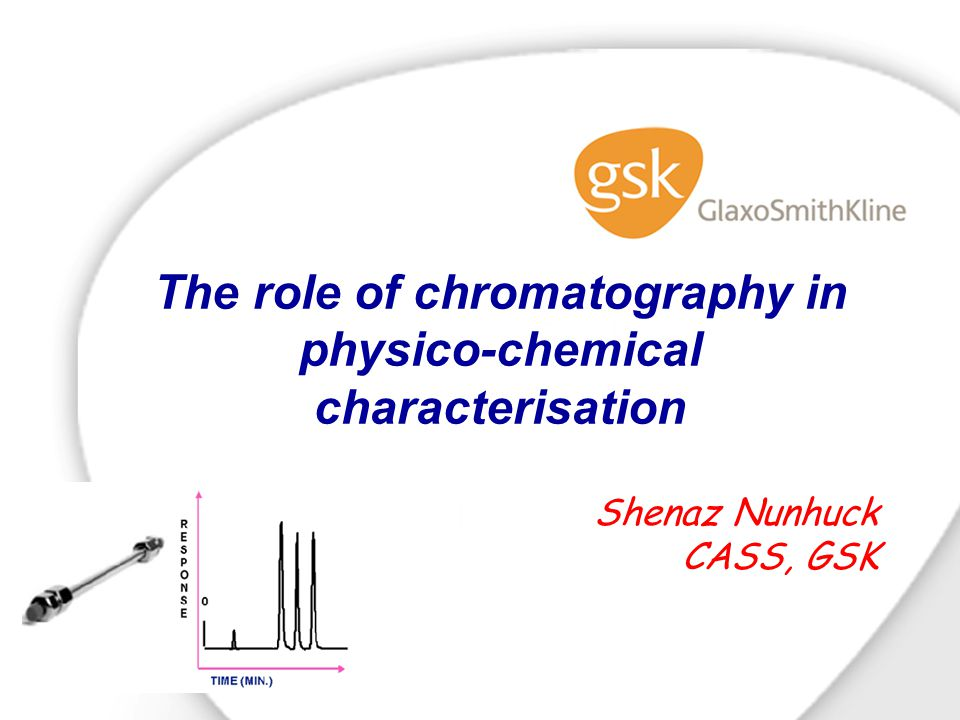 The role of chromatography in physico-chemical characterisation