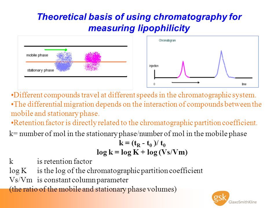 Theoretical basis of using chromatography for measuring lipophilicity