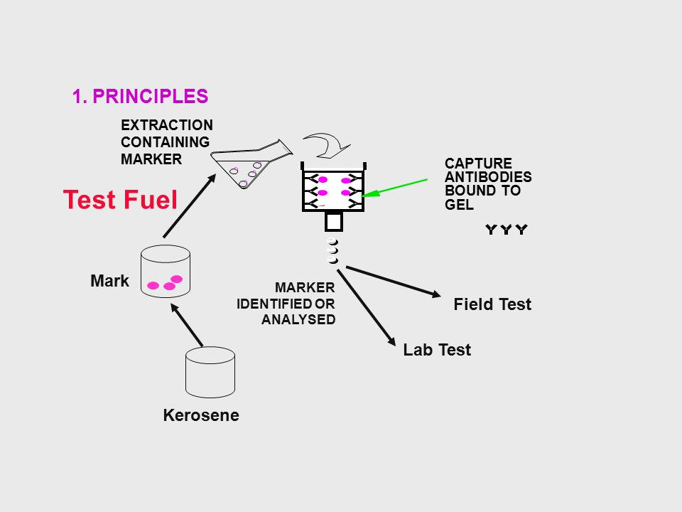Test Fuel 1. PRINCIPLES Mark Field Test Lab Test Kerosene