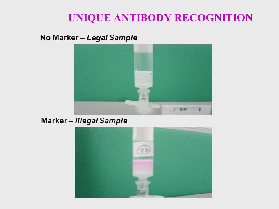 UNIQUE ANTIBODY RECOGNITION