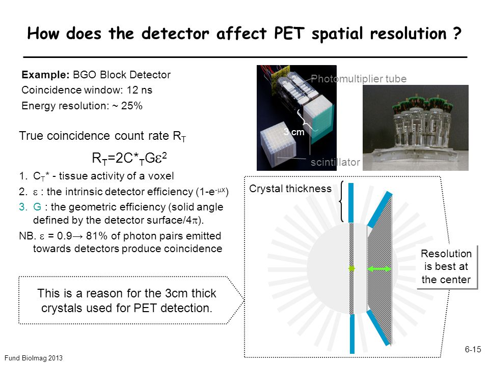 How does the detector affect PET spatial resolution