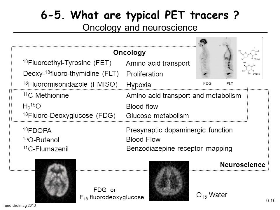 6-5. What are typical PET tracers Oncology and neuroscience