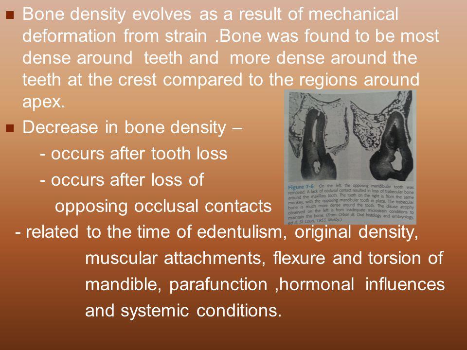 Bone density evolves as a result of mechanical deformation from strain