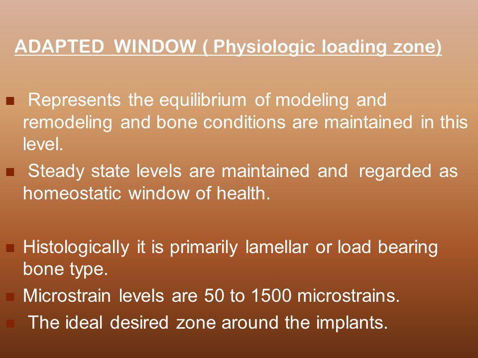 ADAPTED WINDOW ( Physiologic loading zone)