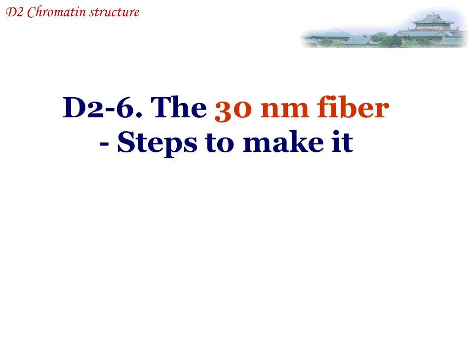 D2-6. The 30 nm fiber - Steps to make it