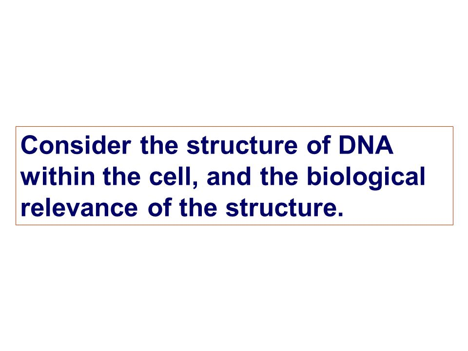 Consider the structure of DNA within the cell, and the biological relevance of the structure.
