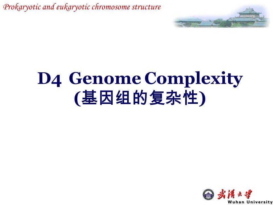 D4 Genome Complexity (基因组的复杂性)