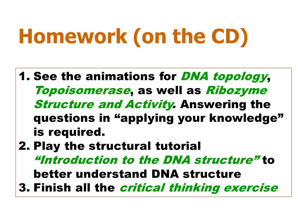 Homework (on the CD)