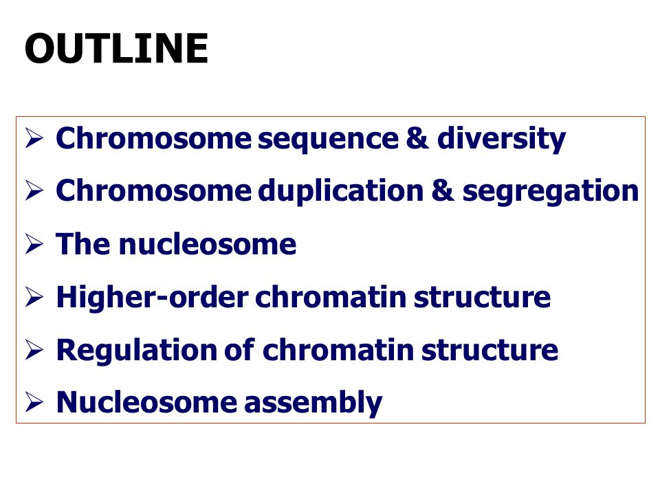 OUTLINE Chromosome sequence & diversity