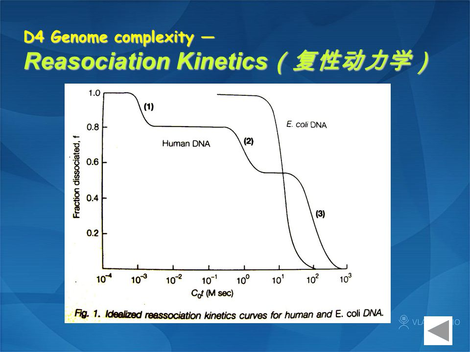 D4 Genome complexity — Reasociation Kinetics(复性动力学)