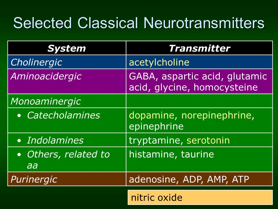 Selected Classical Neurotransmitters