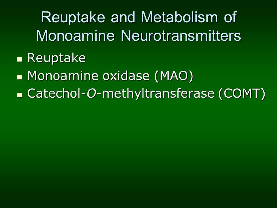 Reuptake and Metabolism of Monoamine Neurotransmitters