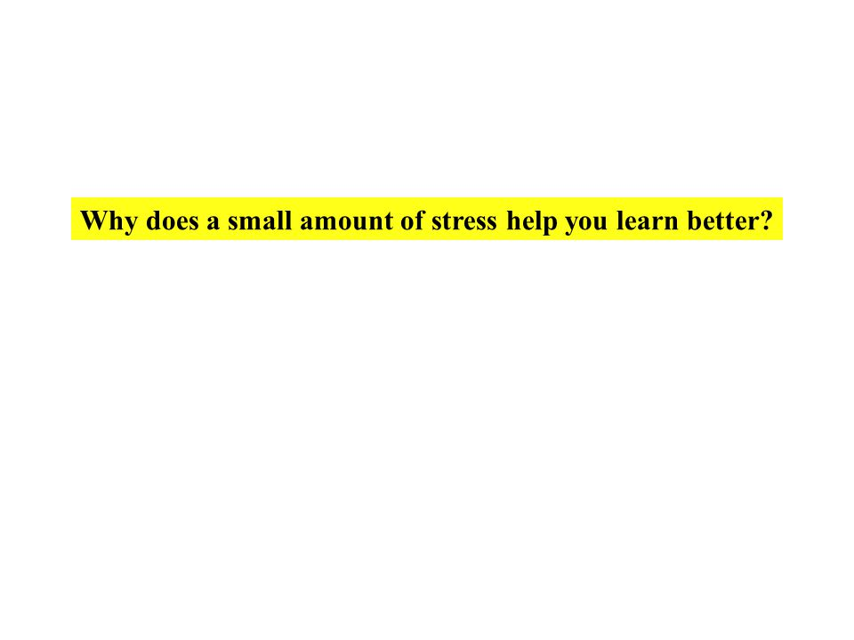 Why does a small amount of stress help you learn better