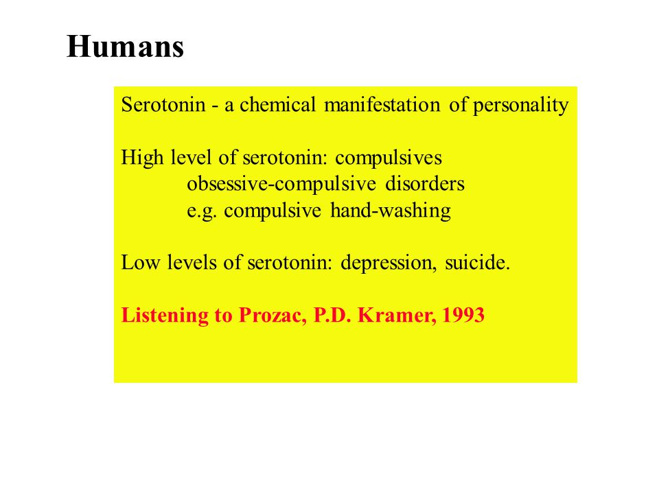 Humans Serotonin - a chemical manifestation of personality