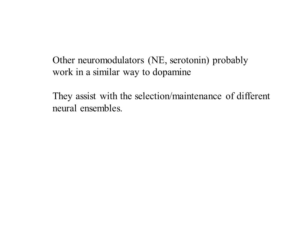 Other neuromodulators (NE, serotonin) probably