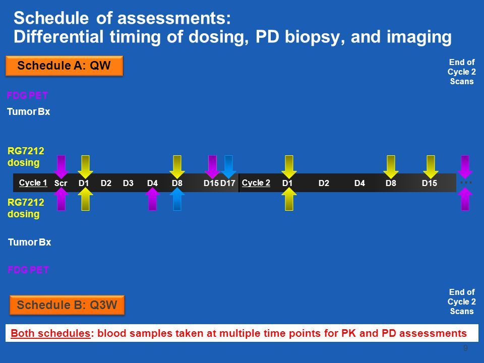 Schedule of assessments: Differential timing of dosing, PD biopsy, and imaging