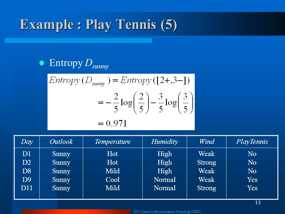 Example : Play Tennis (5)