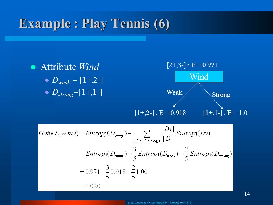 Example : Play Tennis (6)
