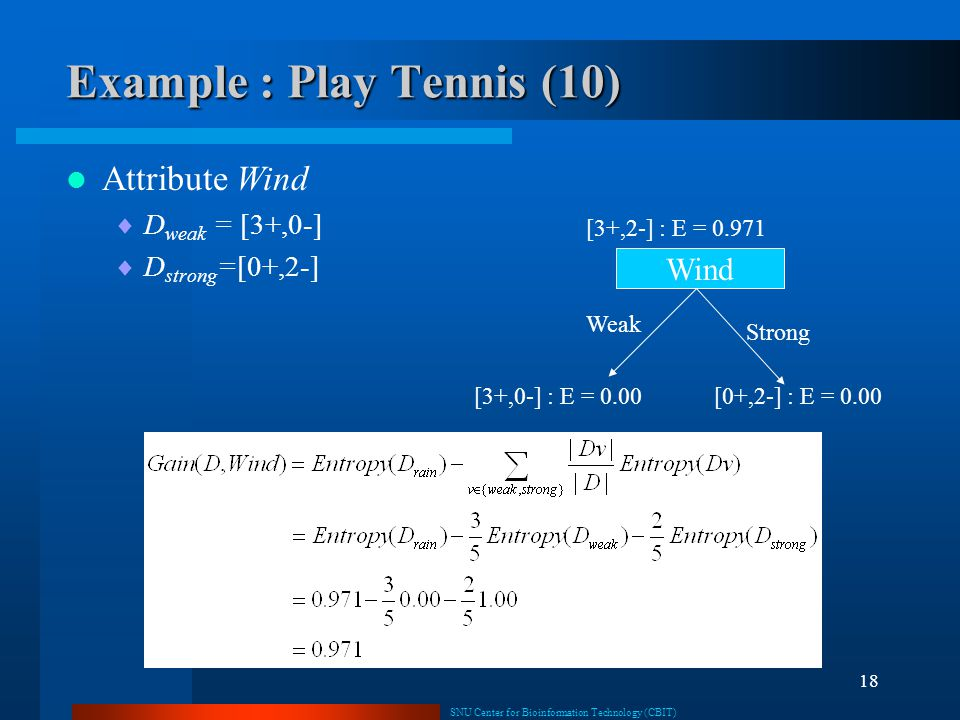 Example : Play Tennis (10)
