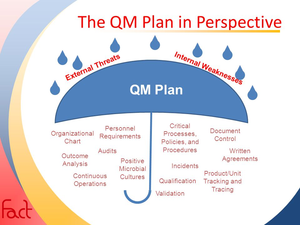 The QM Plan in Perspective