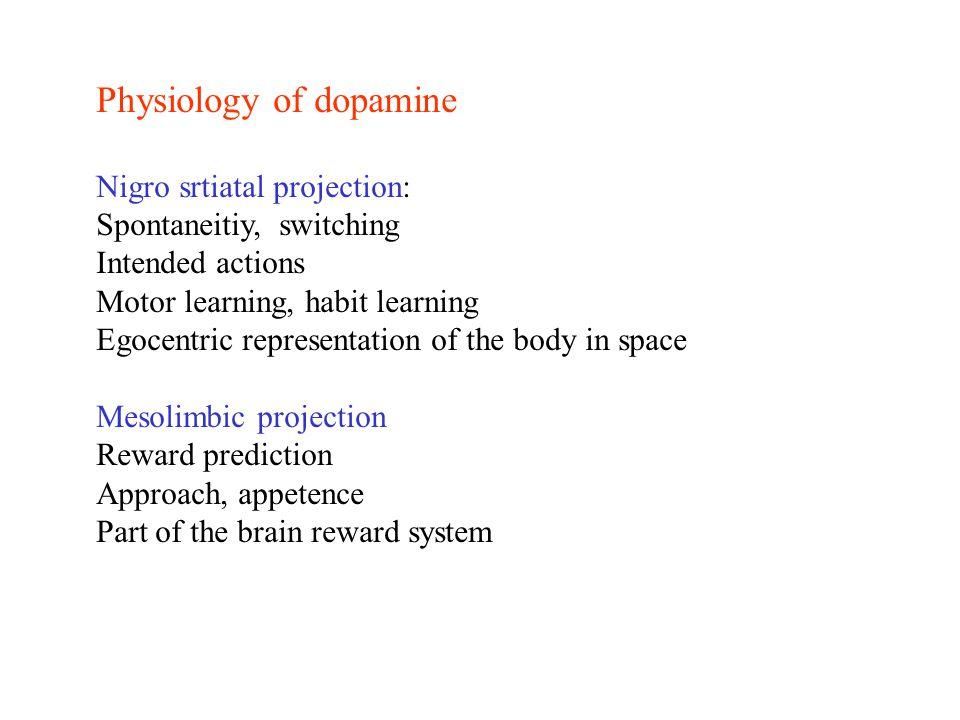 Physiology of dopamine