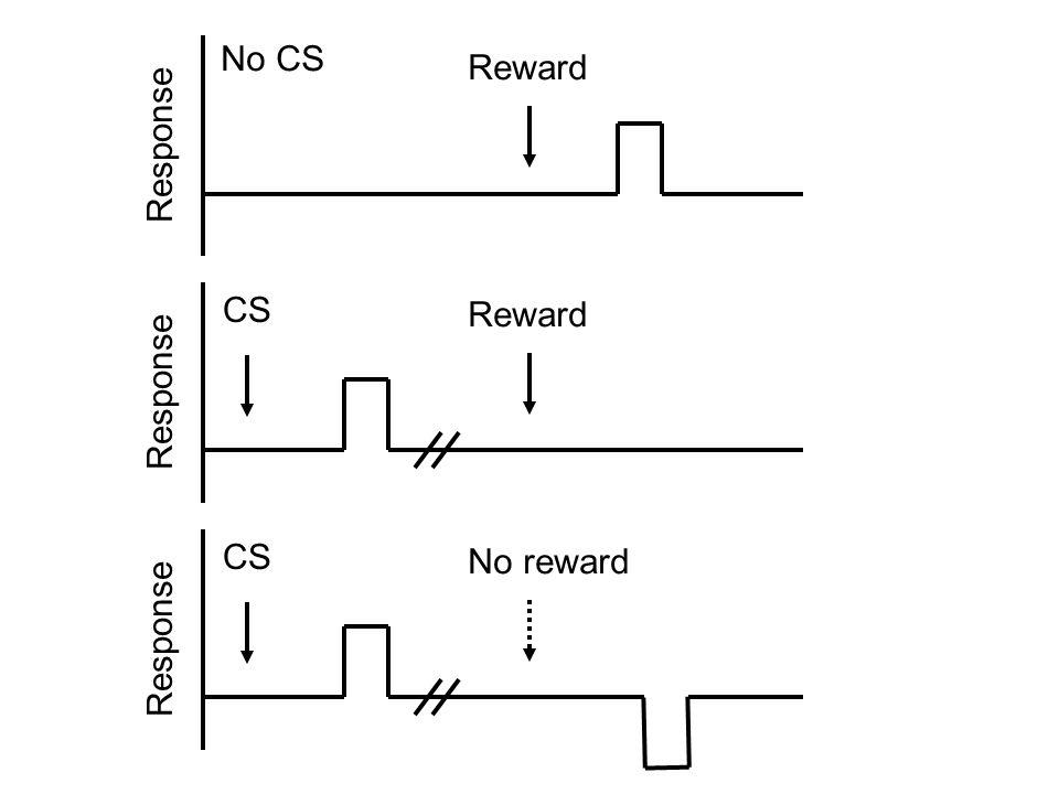 Reward Response No CS Reward Response CS CS No reward Response