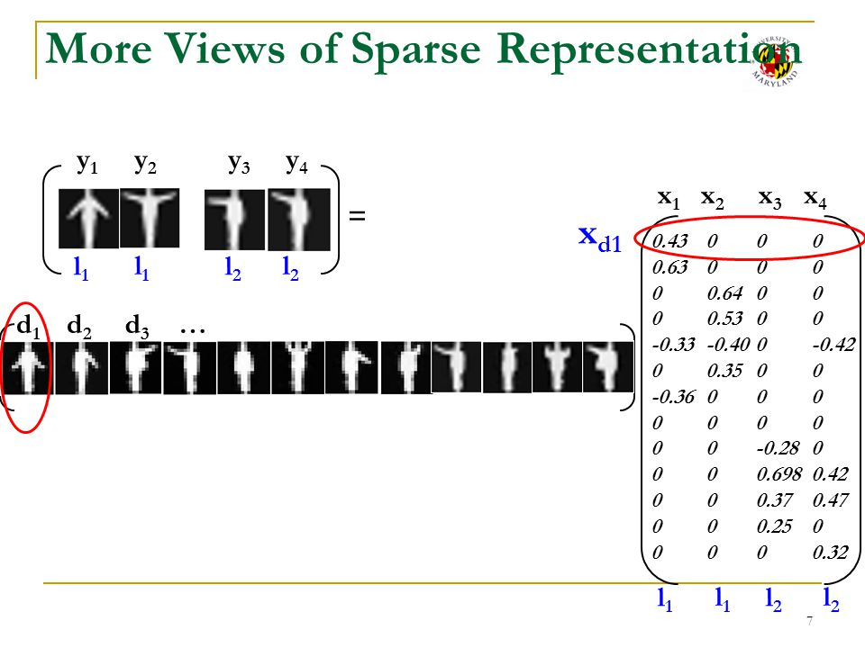 More Views of Sparse Representation