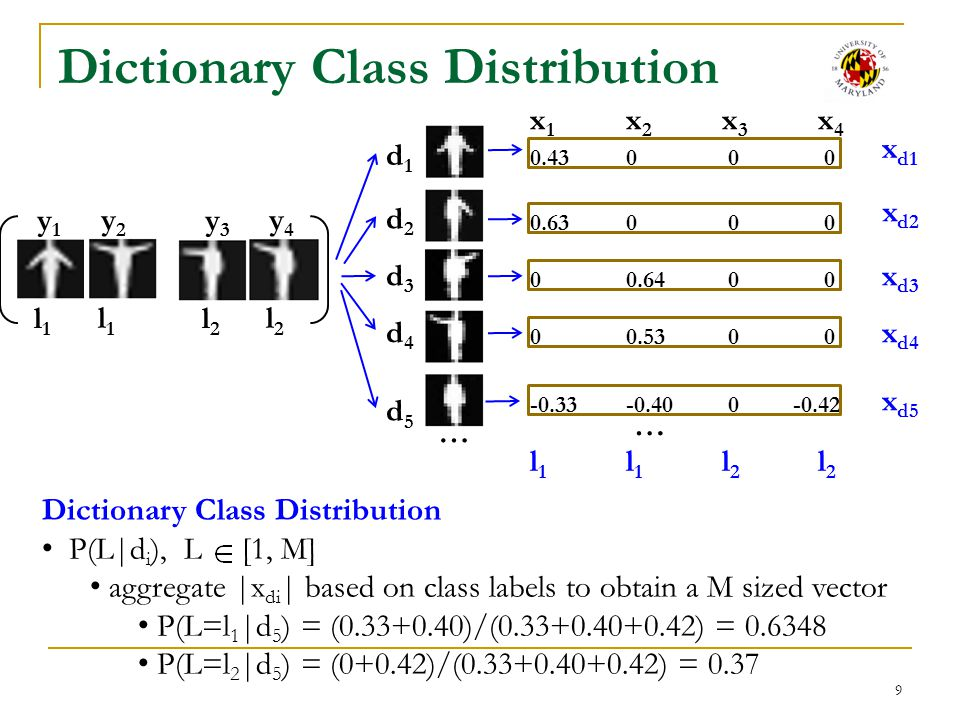 Dictionary Class Distribution