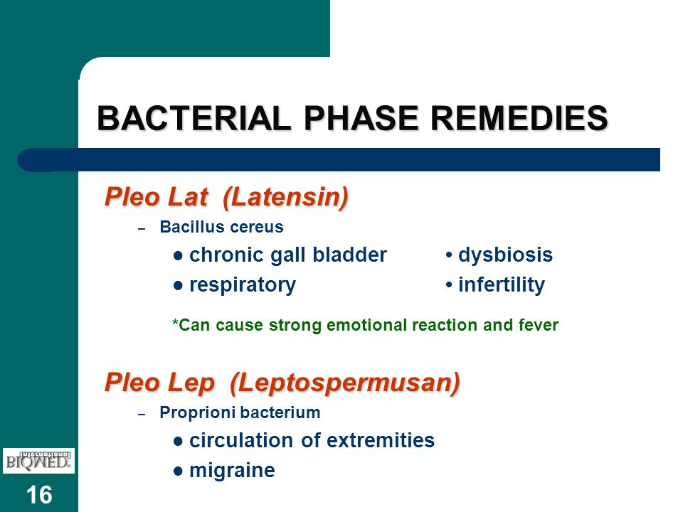 BACTERIAL PHASE REMEDIES