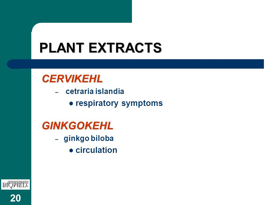 PLANT EXTRACTS CERVIKEHL GINKGOKEHL respiratory symptoms circulation