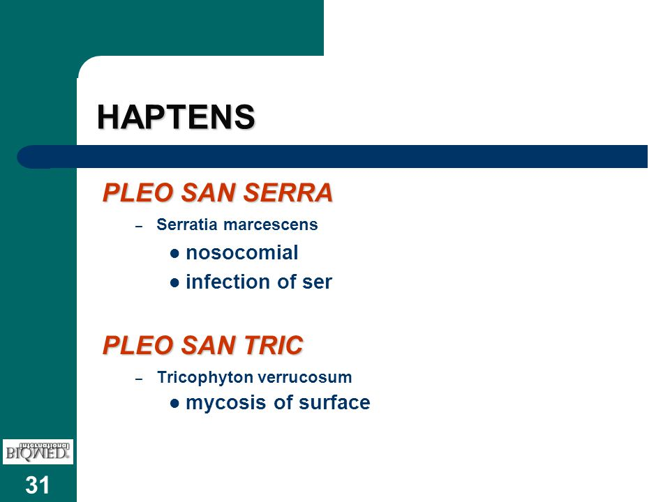 HAPTENS PLEO SAN SERRA PLEO SAN TRIC nosocomial infection of ser