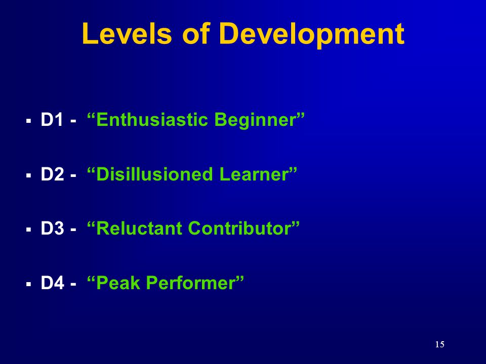Levels of Development D1 - Enthusiastic Beginner