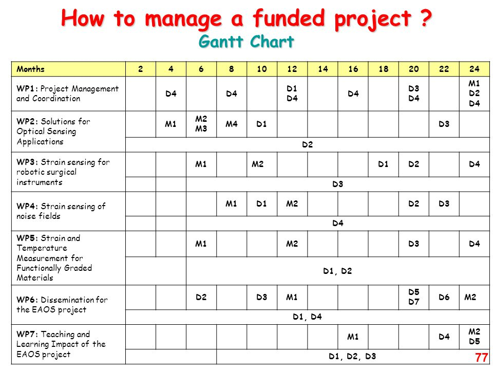 How to manage a funded project Gantt Chart