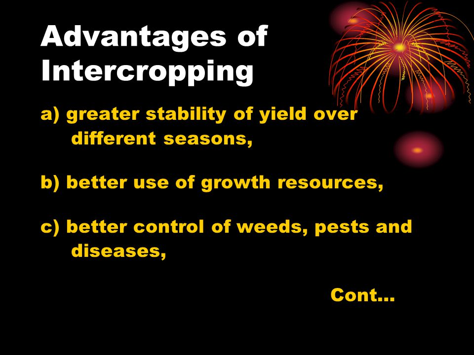 Advantages of Intercropping