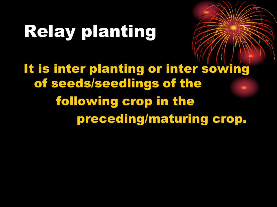 Relay planting It is inter planting or inter sowing of seeds/seedlings of the. following crop in the.