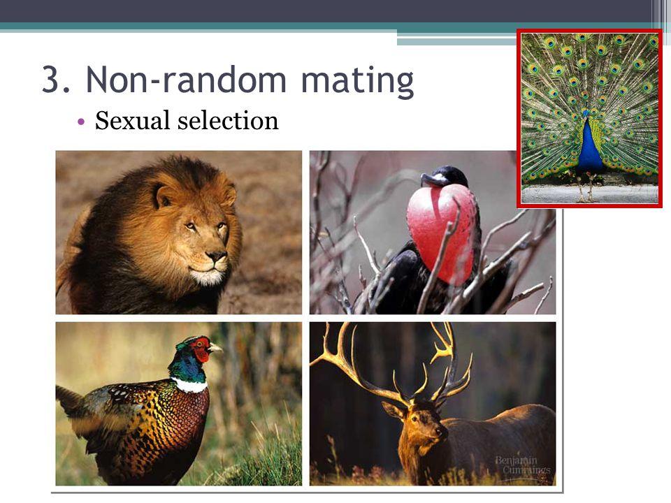 3. Non-random mating Sexual selection