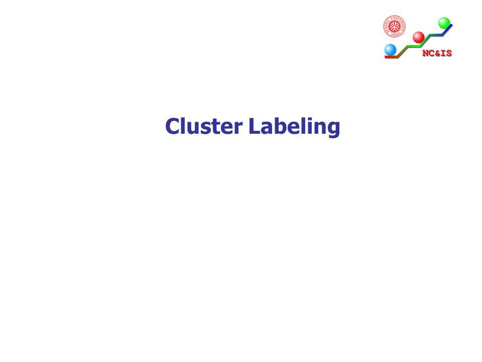 Cluster Labeling