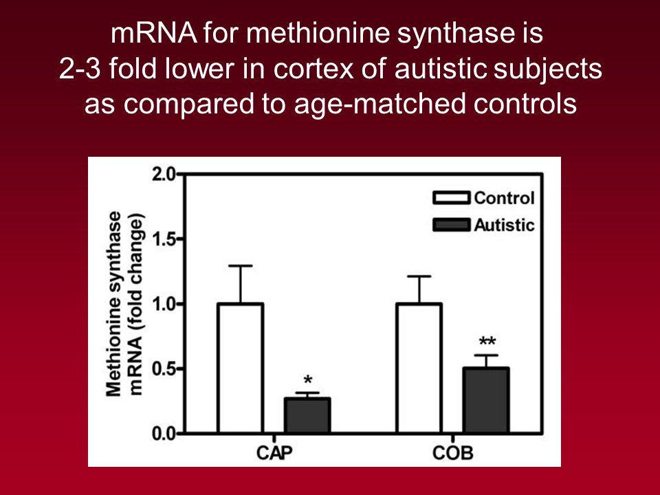 mRNA for methionine synthase is