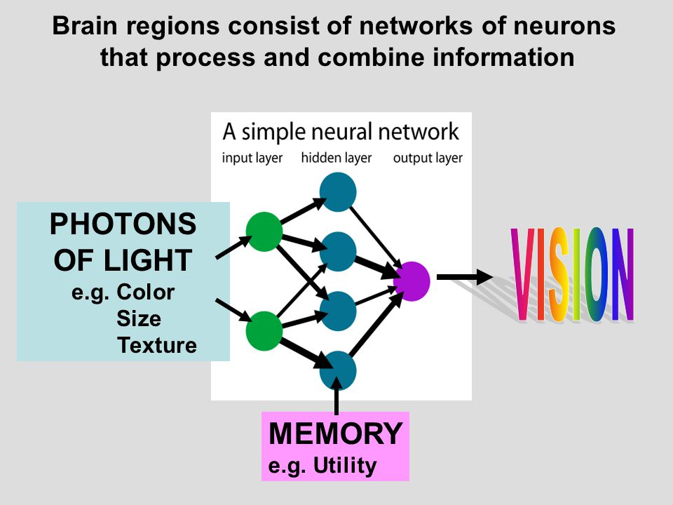 VISION PHOTONS OF LIGHT MEMORY