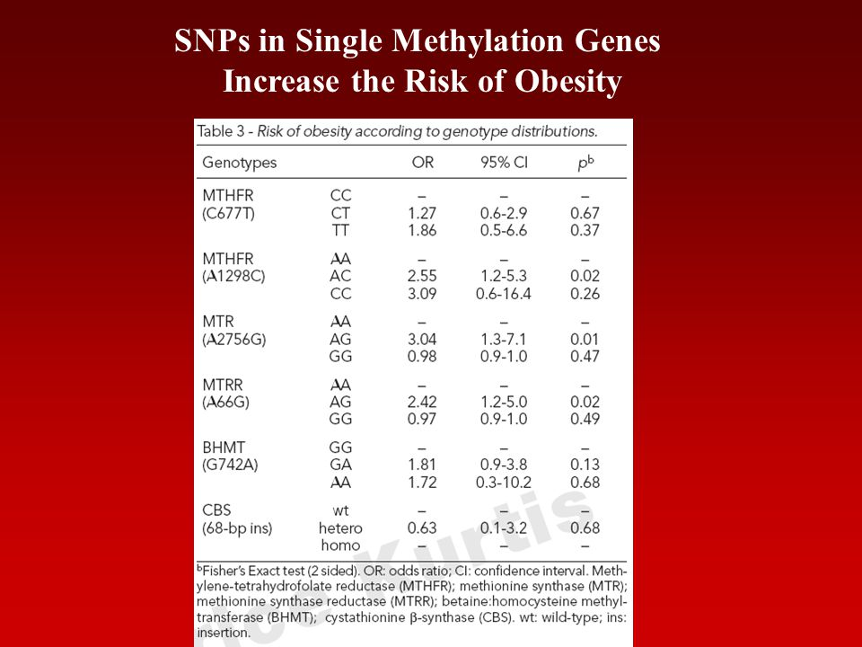SNPs in Single Methylation Genes Increase the Risk of Obesity