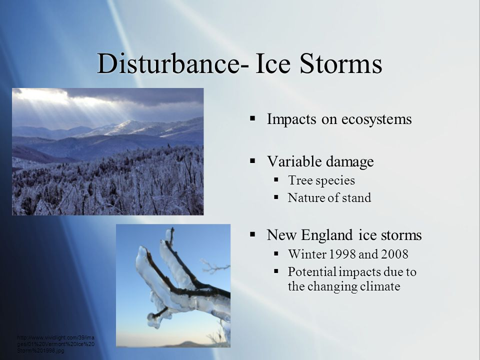 Disturbance- Ice Storms