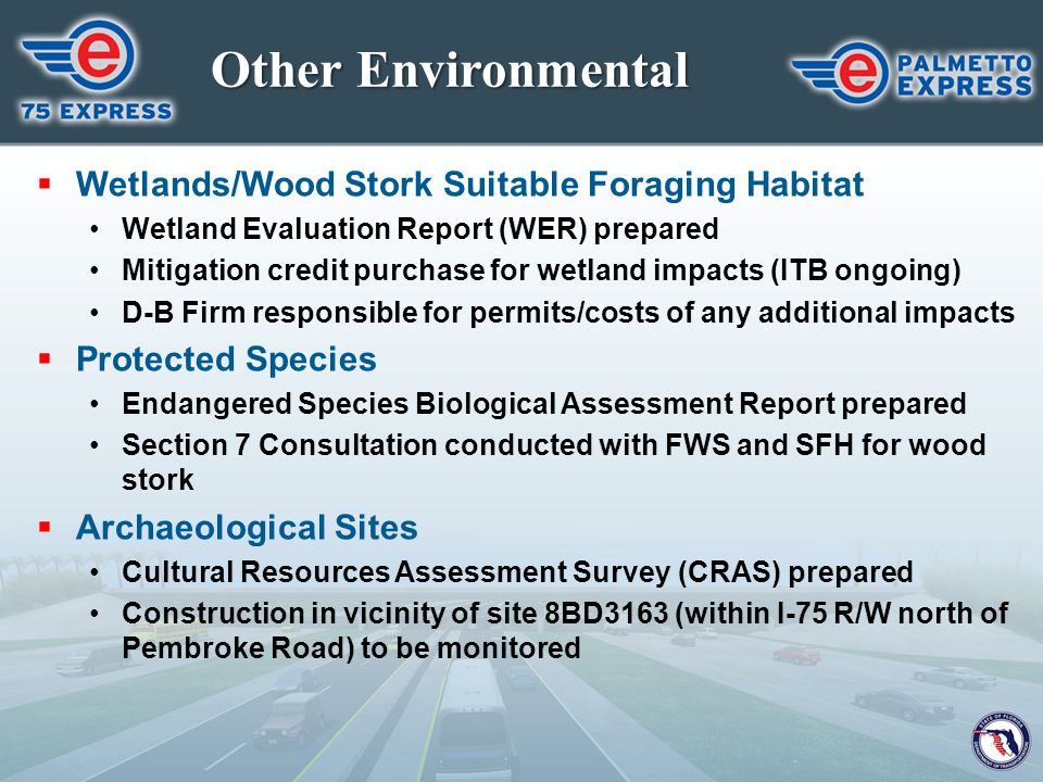 Other Environmental Wetlands/Wood Stork Suitable Foraging Habitat