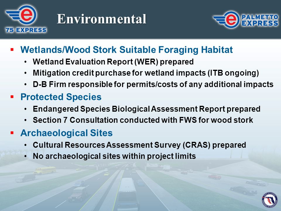 Environmental Wetlands/Wood Stork Suitable Foraging Habitat