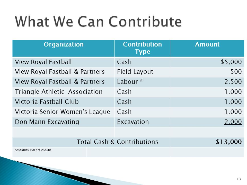 What We Can Contribute Organization Contribution Type Amount