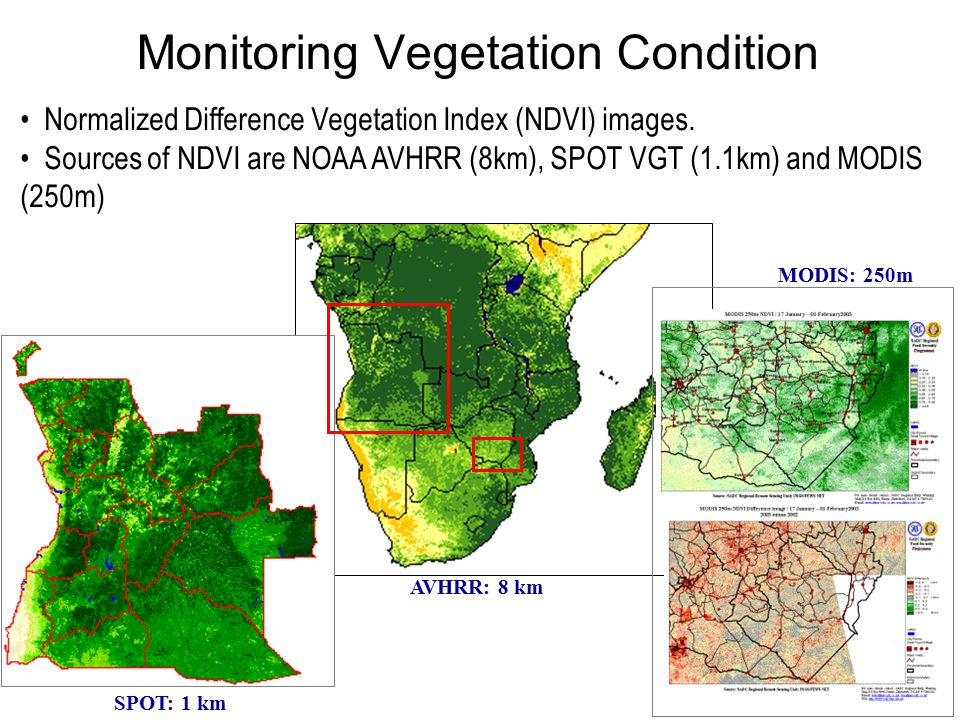 Monitoring Vegetation Condition