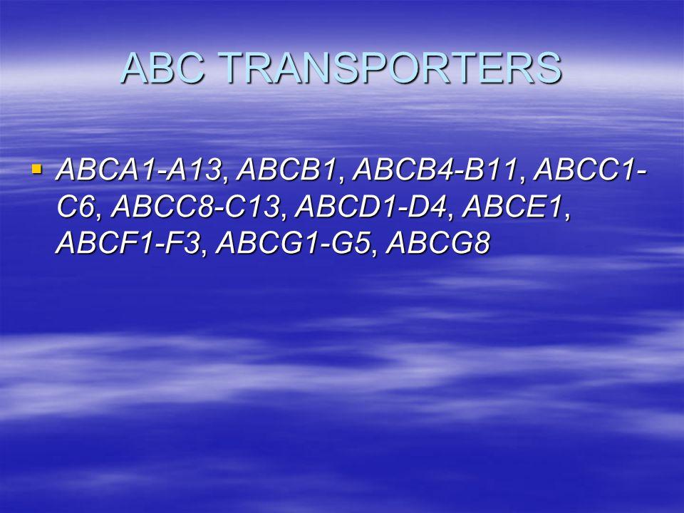 ABC TRANSPORTERS ABCA1-A13, ABCB1, ABCB4-B11, ABCC1-C6, ABCC8-C13, ABCD1-D4, ABCE1, ABCF1-F3, ABCG1-G5, ABCG8.