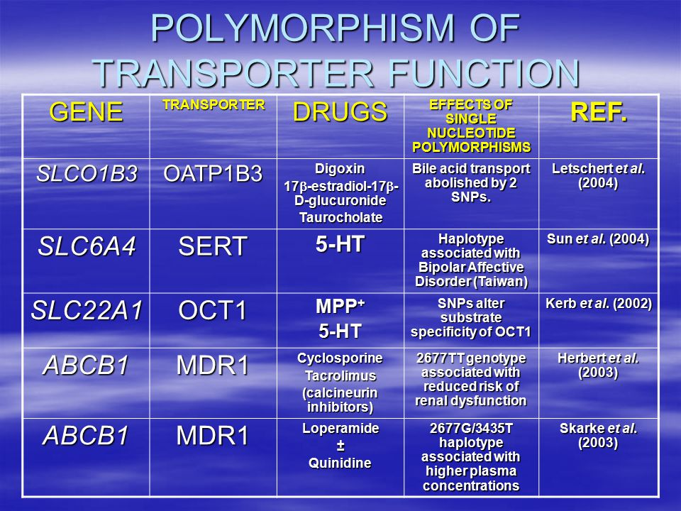 POLYMORPHISM OF TRANSPORTER FUNCTION