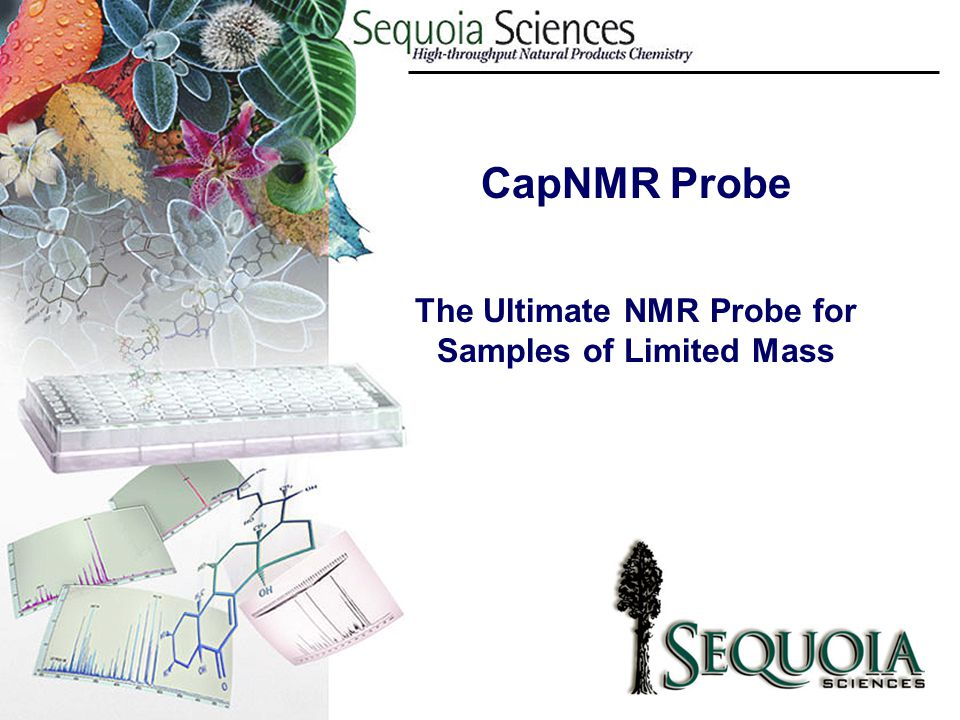 The Ultimate NMR Probe for Samples of Limited Mass