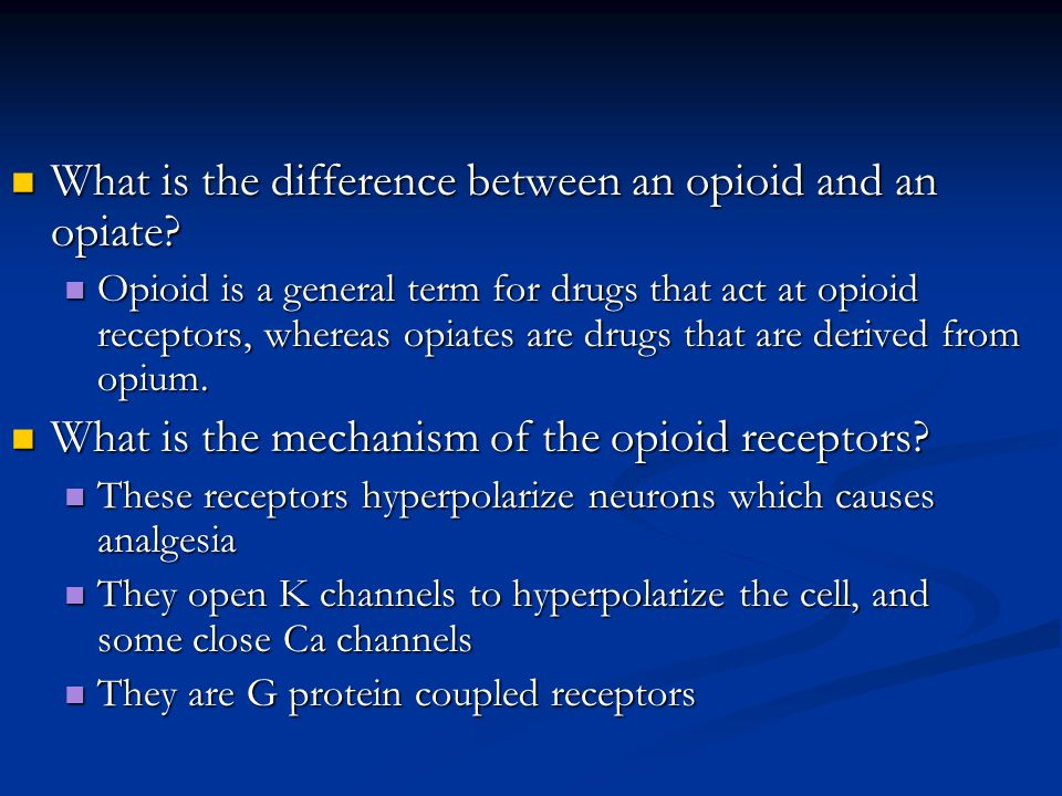 What is the difference between an opioid and an opiate