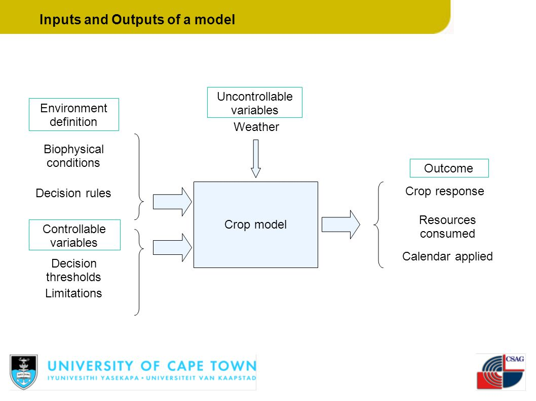 Inputs and Outputs of a model